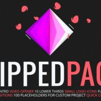 VIDEOHIVE FLIPPED PACK