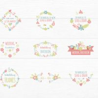 VIDEOHIVE FLOWER TITLES