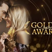 VIDEOHIVE GOLD AWARDS 20551932