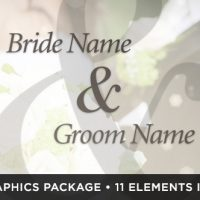 VIDEOHIVE IVORY WEDDING