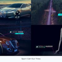 VIDEOHIVE SPORT CALL-OUT TITLES