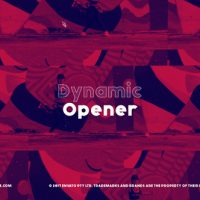 VIDEOHIVE DYNAMIC AND FAST OPENER 22596230