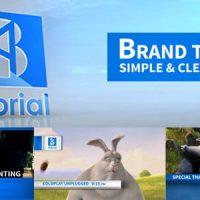 VIDEOHIVE BRAND TV SIMPLE & CLEAN
