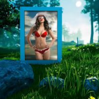 VIDEOHIVE PHOTO GALLERY IN FOREST