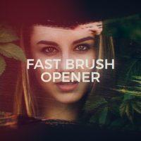VIDEOHIVE FAST BRUSH OPENER