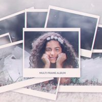 VIDEOHIVE MULTI FRAME PHOTO GALLERY