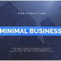 VIDEOHIVE MINIMAL BUSINESS