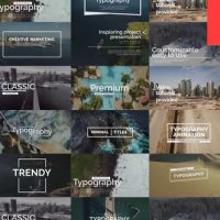 VIDEOHIVE ESSENTIAL TITLES V.1