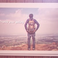 VIDEOHIVE STOP MOTION GALLERY