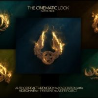 VIDEOHIVE GOLDEN BREATH