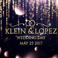 VIDEOHIVE WEDDING OPENER 19773635