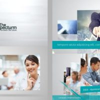 VIDEOHIVE LINES CORPORATE PACK