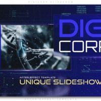 VIDEOHIVE DIGICORP SLIDESHOW