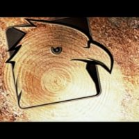 VIDEOHIVE SAW CUT TREE LOGO