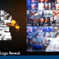 VIDEOHIVE VIDEO OR PHOTO LOGO REVEAL