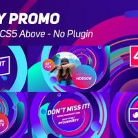 VIDEOHIVE PARTY PROMO 20537901