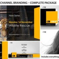 VIDEOHIVE BROADCAST DESIGN – TV CHANNEL BRANDING 1