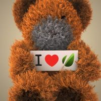 VIDEOHIVE DANCING TEDDY BEAR
