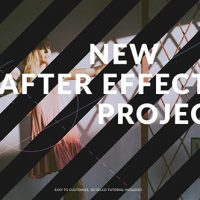 VIDEOHIVE PERFECTION // SLIDESHOW