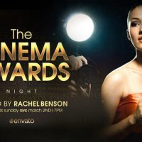 VIDEOHIVE THE CINEMA AWARDS