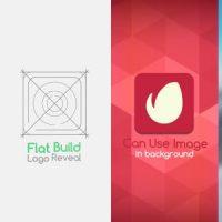 VIDEOHIVE FLAT BUILD LOGO REVEAL