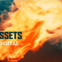 TRIUNE DIGITAL – FIRE ASSETS: 30 UNIQUE FIRES