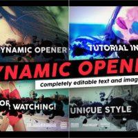 VIDEOHIVE DYNAMIC OPENER 2420194