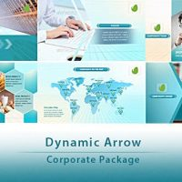VIDEOHIVE DYNAMIC ARROW – CORPORATE PACKAGE