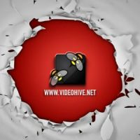 VIDEOHIVE TEAR LOGO REVEAL