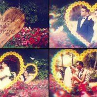 VIDEOHIVE WEDDING GARDEN