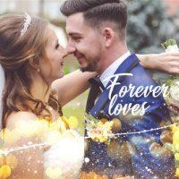 VIDEOHIVE WEDDING SLIDESHOW 24044686