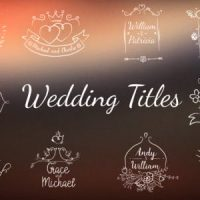 VIDEOHIVE WEDDING/ROMANTIC TITLES
