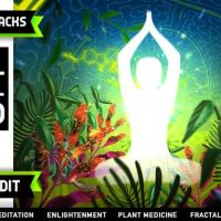 VIDEOHIVE PSYCHEDELIC FRACTALS LOGO
