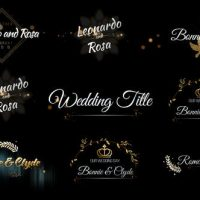 VIDEOHIVE SIX BEAUTIFUL WEDDING TITLE