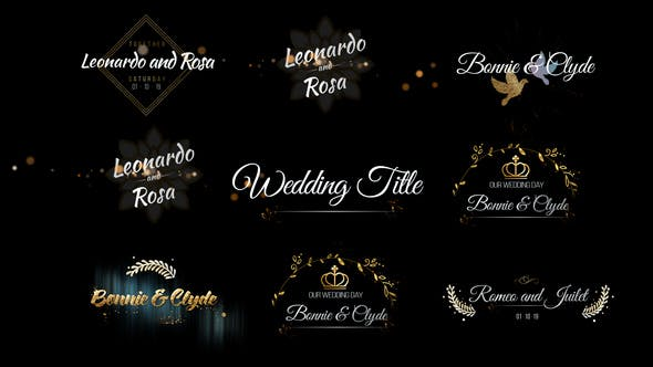 VIDEOHIVE SIX BEAUTIFUL WEDDING TITLE - Free After Effects