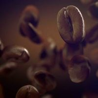 VIDEOHIVE COFFEE 22778458