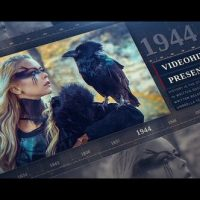 VIDEOHIVE HISTORY TIMELINE 24494284