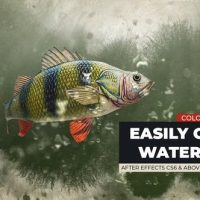 VIDEOHIVE FISH LOGO REVEAL