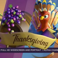 VIDEOHIVE HAPPY THANKSGIVING 3D