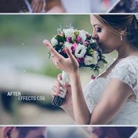 VIDEOHIVE WEDDING SLIDE