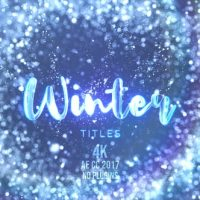 VIDEOHIVE WINTER SNOW TITLES