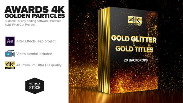 VIDEOHIVE AWARDS 4K GOLDEN GLITTER PARTICLES TITLES - Free