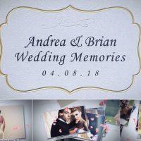 VIDEOHIVE WEDDING MEMORIES 22407082