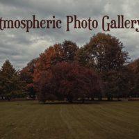 VIDEOHIVE ATMOSPHERIC PHOTO GALLERY 4K