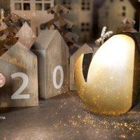 VIDEOHIVE CHRISTMAS GREETING 25048782