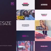 VIDEOHIVE AUTO RESIZING TITLES