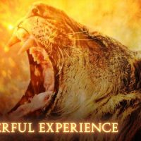 VIDEOHIVE EPIC MYSTERIOUS TRAILER