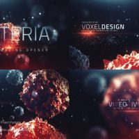 VIDEOHIVE THE BACTERIA INFECTION OPENER