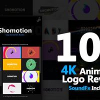 VIDEOHIVE LOGO PACK
